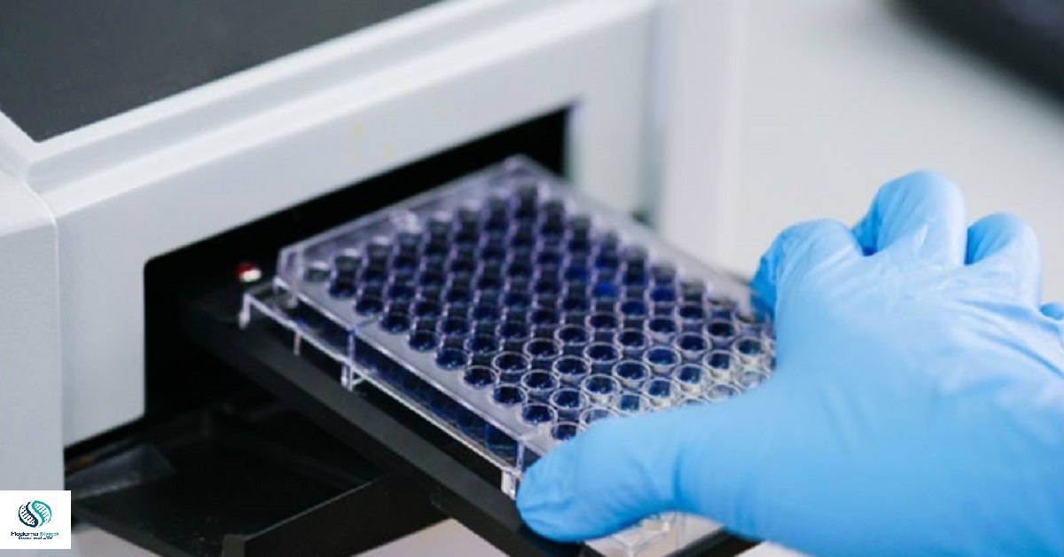 Difference between Indirect and sandwich Elisa