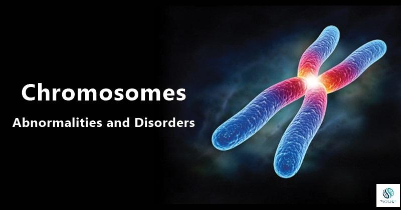 Types of chromosomal abnormalities modernabiotech