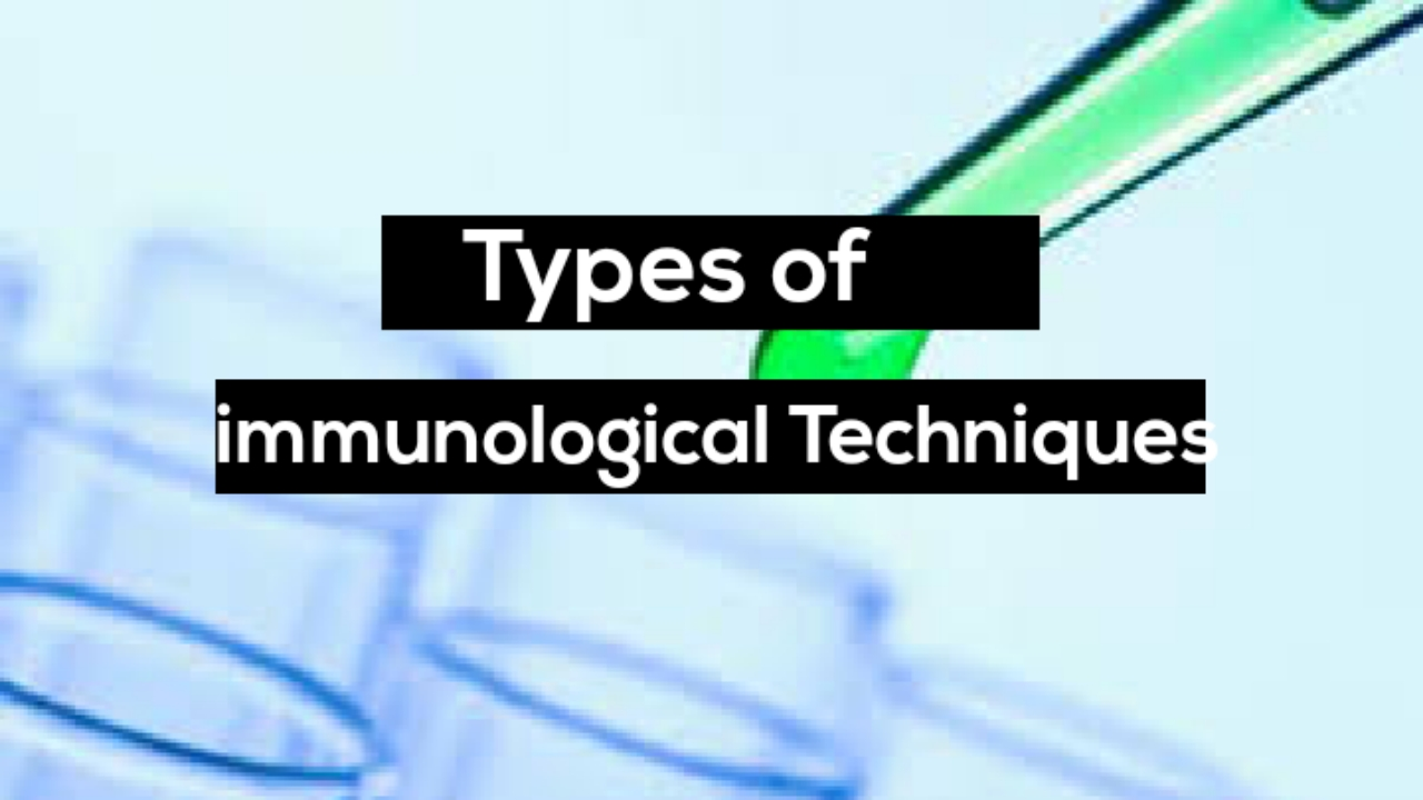 what immunological techniques are used in the detection of infection?