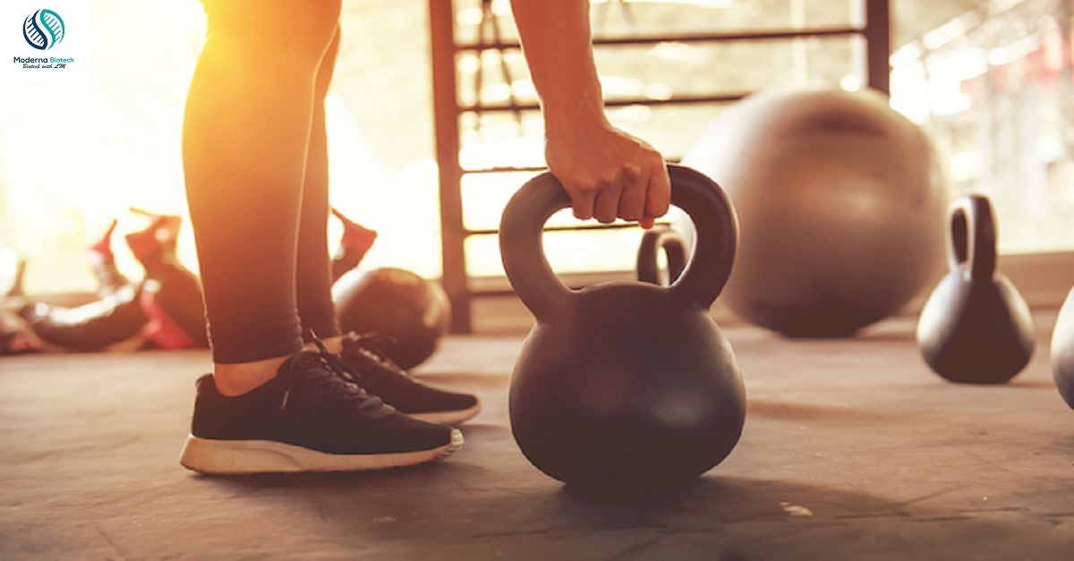 How many types of workout in gym modernabiotech