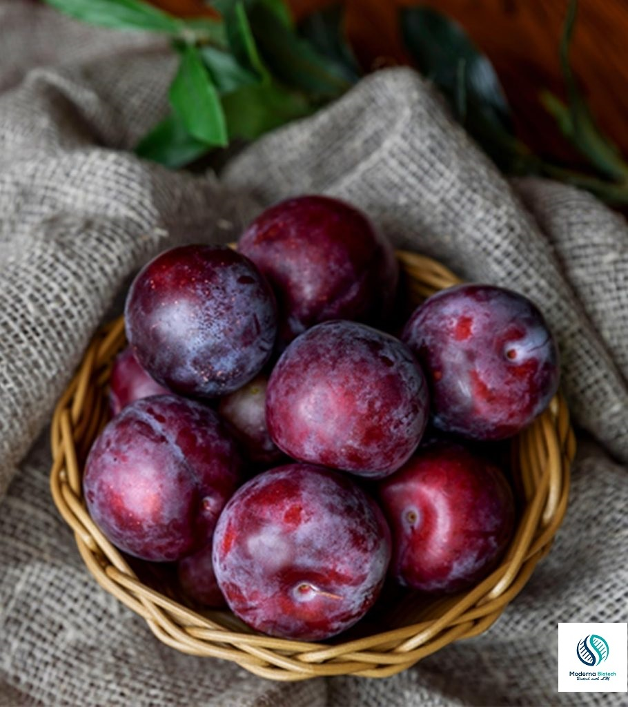 Nutritional importance of fruits in human diet