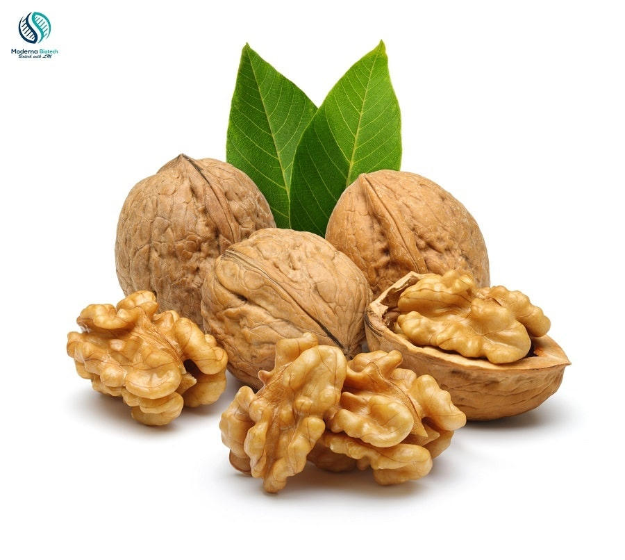 Top 5 dry fruits for good health