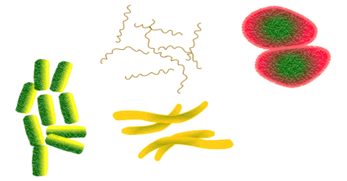 Microbes as tools for microbiological research