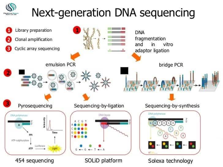 Next generation sequencing steps