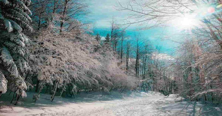 Things to do in Niagara falls Canada during winters